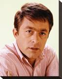 Bill Bixby - The Courtship of Eddie's Father Stretched Canvas Print