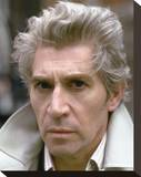 Frank Finlay - Bouquet of Barbed Wire Stretched Canvas Print