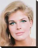 Candice Bergen Stretched Canvas Print