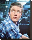 Albert Finney Stretched Canvas Print