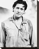 Gabriel Byrne Stretched Canvas Print