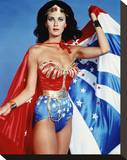 Lynda Carter Stretched Canvas Print