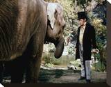 Rex Harrison - Doctor Dolittle Stretched Canvas Print
