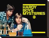 The Hardy Boys/Nancy Drew Mysteries Stretched Canvas Print