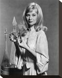 Shirley Knight Stretched Canvas Print