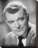 Jack Hawkins Stretched Canvas Print