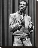 Eddie Murphy Stretched Canvas Print