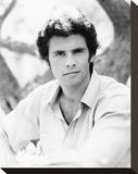 Lorenzo Lamas - Falcon Crest Stretched Canvas Print