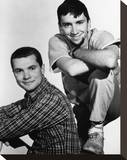 The Many Loves of Dobie Gillis (1959) Stretched Canvas Print