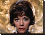 Linda Thorson Stretched Canvas Print