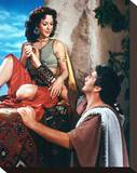 Samson and Delilah Stretched Canvas Print