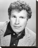 Wayne Rogers Stretched Canvas Print