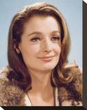Diana Muldaur Stretched Canvas Print