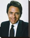 Bill Bixby - The Incredible Hulk Stretched Canvas Print