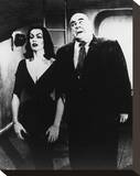 Plan 9 from Outer Space (1959) Stretched Canvas Print