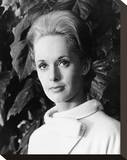 Tippi Hedren, The Birds (1963) Stretched Canvas Print
