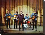 Herman's Hermits Stretched Canvas Print