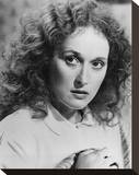 Meryl Streep - The French Lieutenant's Woman Stretched Canvas Print
