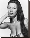 Imogen Hassall, When Dinosaurs Ruled the Earth (1970) Stretched Canvas Print
