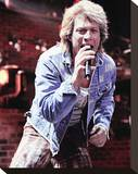 Jon Bon Jovi Stretched Canvas Print