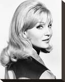 Susan Oliver Stretched Canvas Print