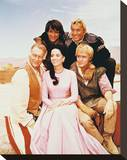 The High Chaparral Stretched Canvas Print