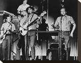The Beach Boys Stretched Canvas Print