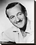David Niven, Bonjour tristesse (1958) Stretched Canvas Print