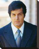 Peter Lupus, Mission: Impossible (1966) Stretched Canvas Print