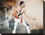 Freddie Mercury - Queen Stretched Canvas Print