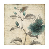 Blue Botanical II Giclee Print by Anna Polanski