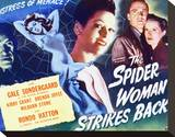 The Spider Woman Strikes Back Stretched Canvas Print