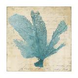 Blue Coral I Poster by Anna Polanski