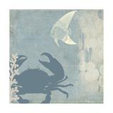 Ocean Life II Giclee Print by Sloane Addison
