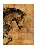 Stallion I Prints by Anna Polanski
