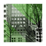 City Trees III Giclee Print by Kevin Calaguiro