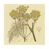 Yellow Weeds Posters