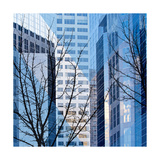 City Trees I Giclee Print by Kevin Calaguiro