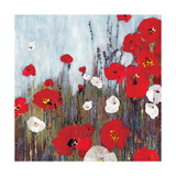 Passion Poppies II Giclee Print by Andrew Michaels