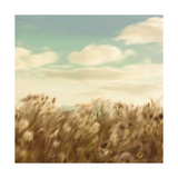 Dandelion Field Poster by Anna Polanski