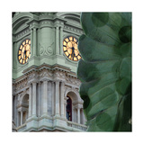 Mint O'Clock Photographic Print by Kevin Calaguiro