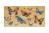 Butterflies in Flight Giclee Print by Anna Polanski