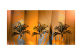 Tropicana Photographic Print by Andrew Michaels