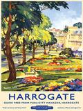 Harrogate Tin Sign