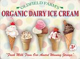 Organic Dairy Ice cream Cartel de metal