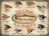 The Classic Wet Trout Fly Carteles metálicos