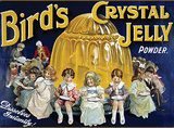 Bird's Crystal Jelly Blechschild
