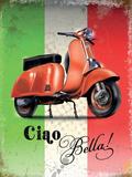 Vespa Italian Flag Plaque en métal