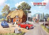 TR4 Cartel de chapa