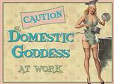 Domestic Goddess Plakietka emaliowana